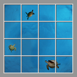 Ceiling Mural se-df060_8x8md by David Fleetham